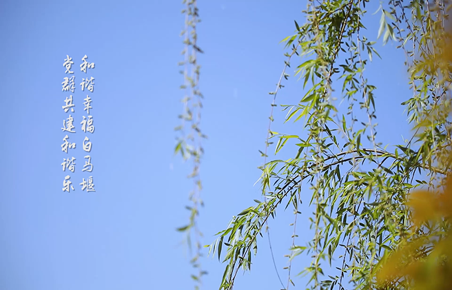 平湖白马堰社区之歌